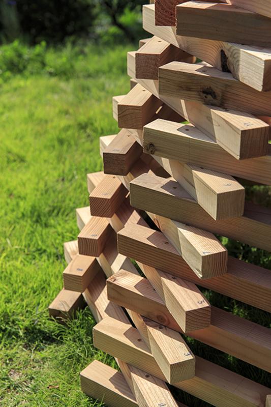 Timber5