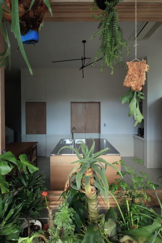 Botanical house2