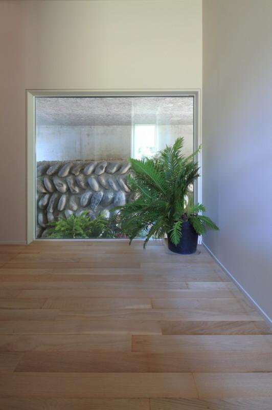 Botanical house6